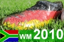Grafik wm 2010